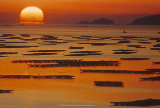 The Inland Sea at sunrise..  2005. Image.