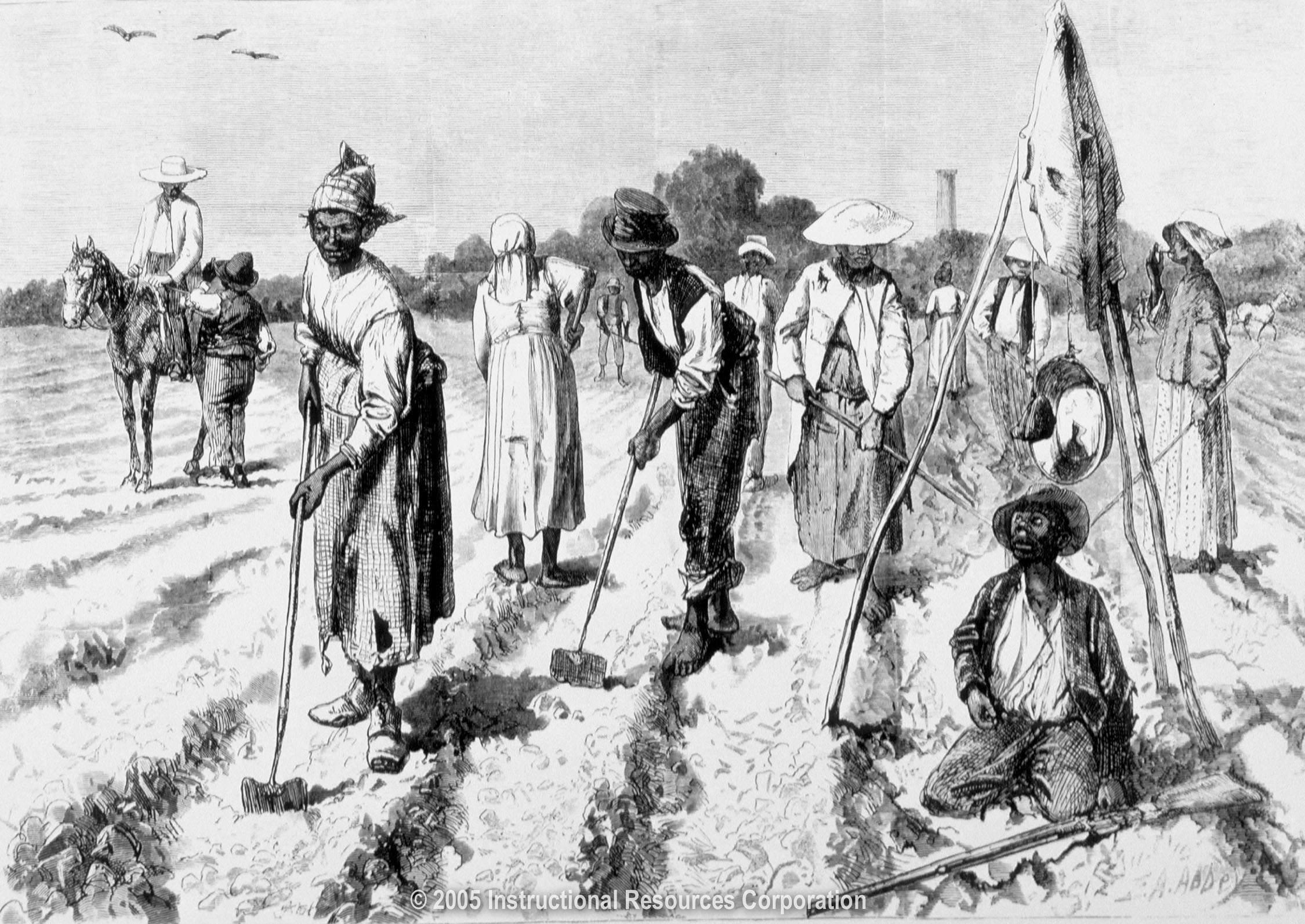 African American Slave Trade Migration